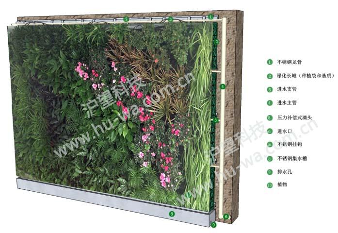 垂直绿化效果图