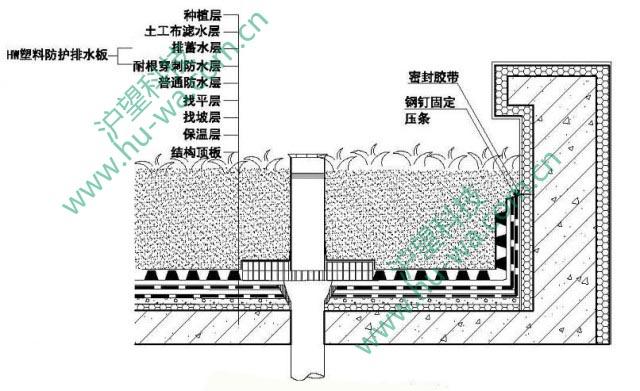 ②种植屋面排水构造