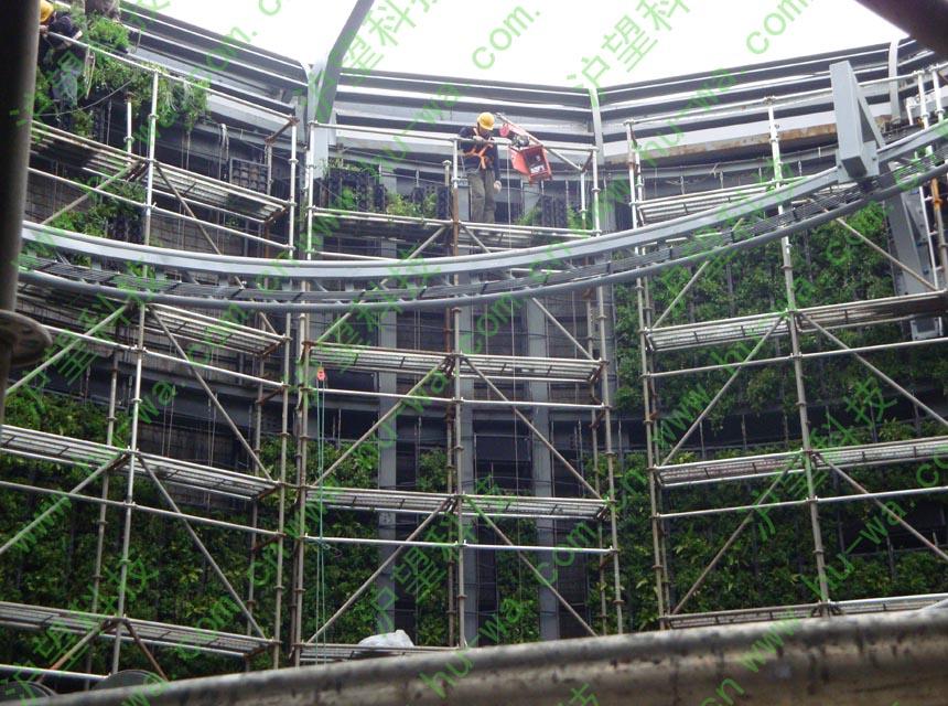 上海世博瑞士馆垂直绿化施工图