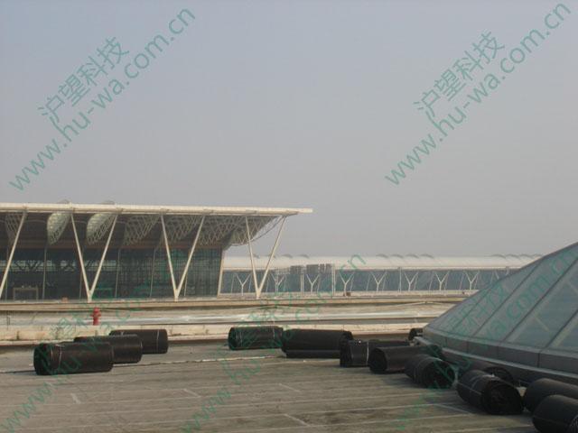 浦东国际机场屋顶绿化项目