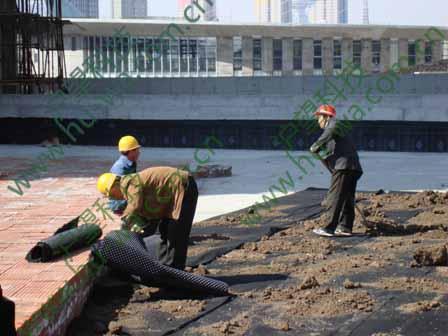 天津塘沽伴景湾排水板施工现场