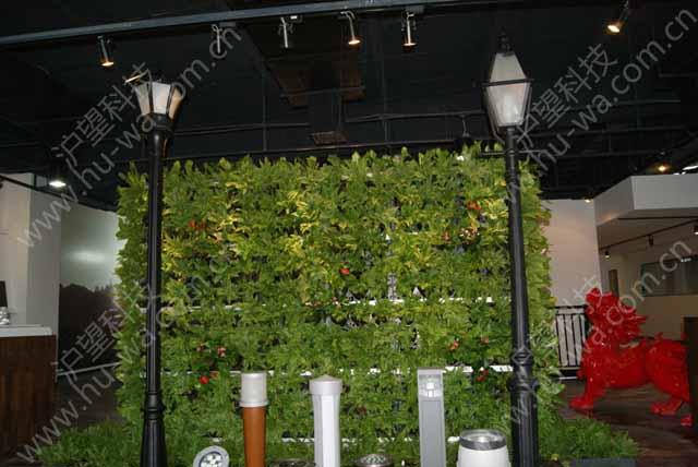 室内垂直绿化植物墙