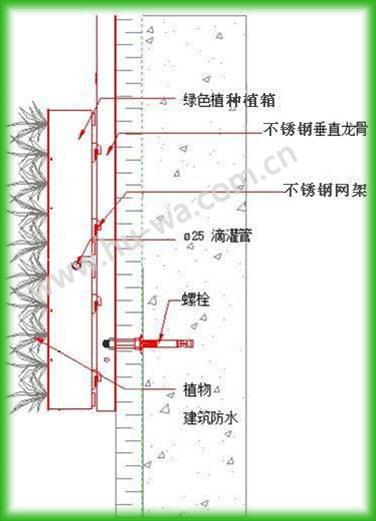 垂直绿化节点图