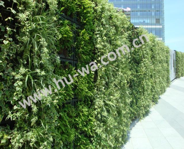 新恒基地产垂直绿化植物墙