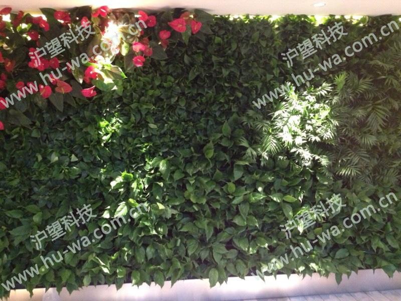 温德姆豪生度假酒店室内垂直绿化项目