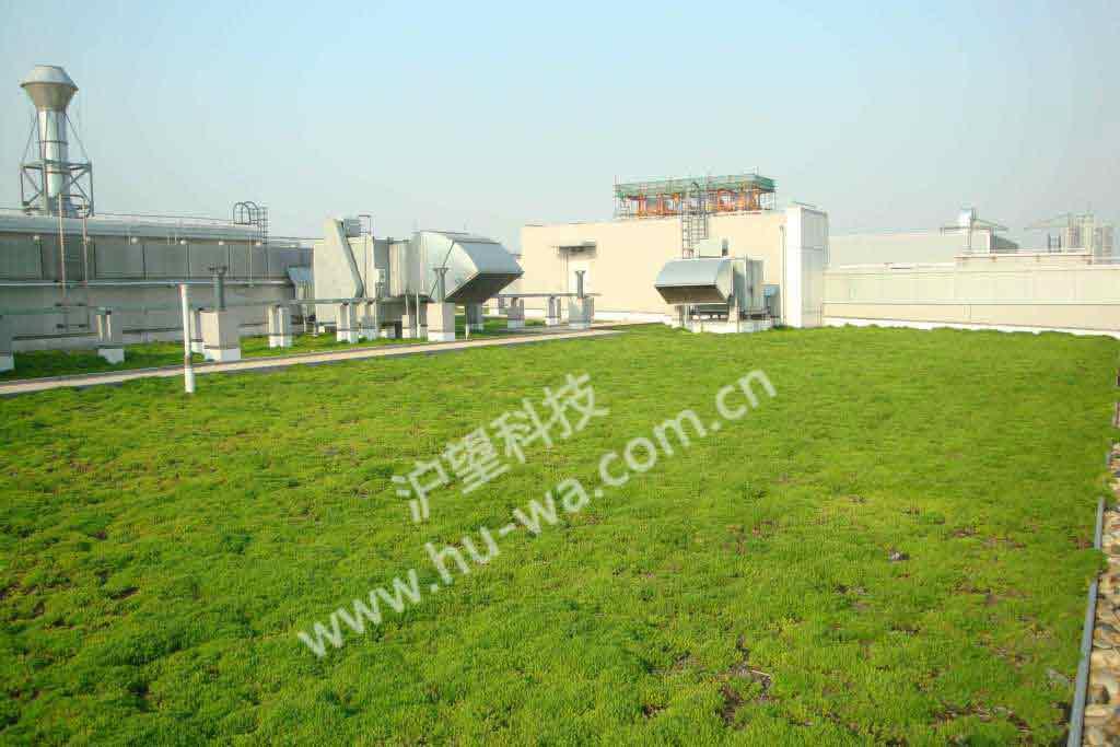 上海阿斯利康屋顶绿化