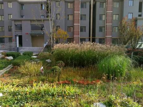 沣西新城海绵城市建设案例解析——康定和园项目